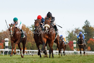 Black Mamba (Black Minnaloushe), Robby Albarado up, wins the Dowager S. at Keeneland 10.25.2009mw