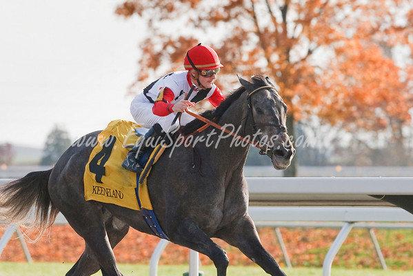 Warbling (Unbridled's Song), Julien Leparoux up, wins a Maiden Special Weight at Keeneland 10.30.2009mw