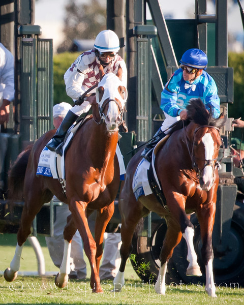 Gio Ponti (Tale of the Cat), Ramon Dominguez up, wins the Shadwell Turf Mile at Keeneland 10.09.2010ww
