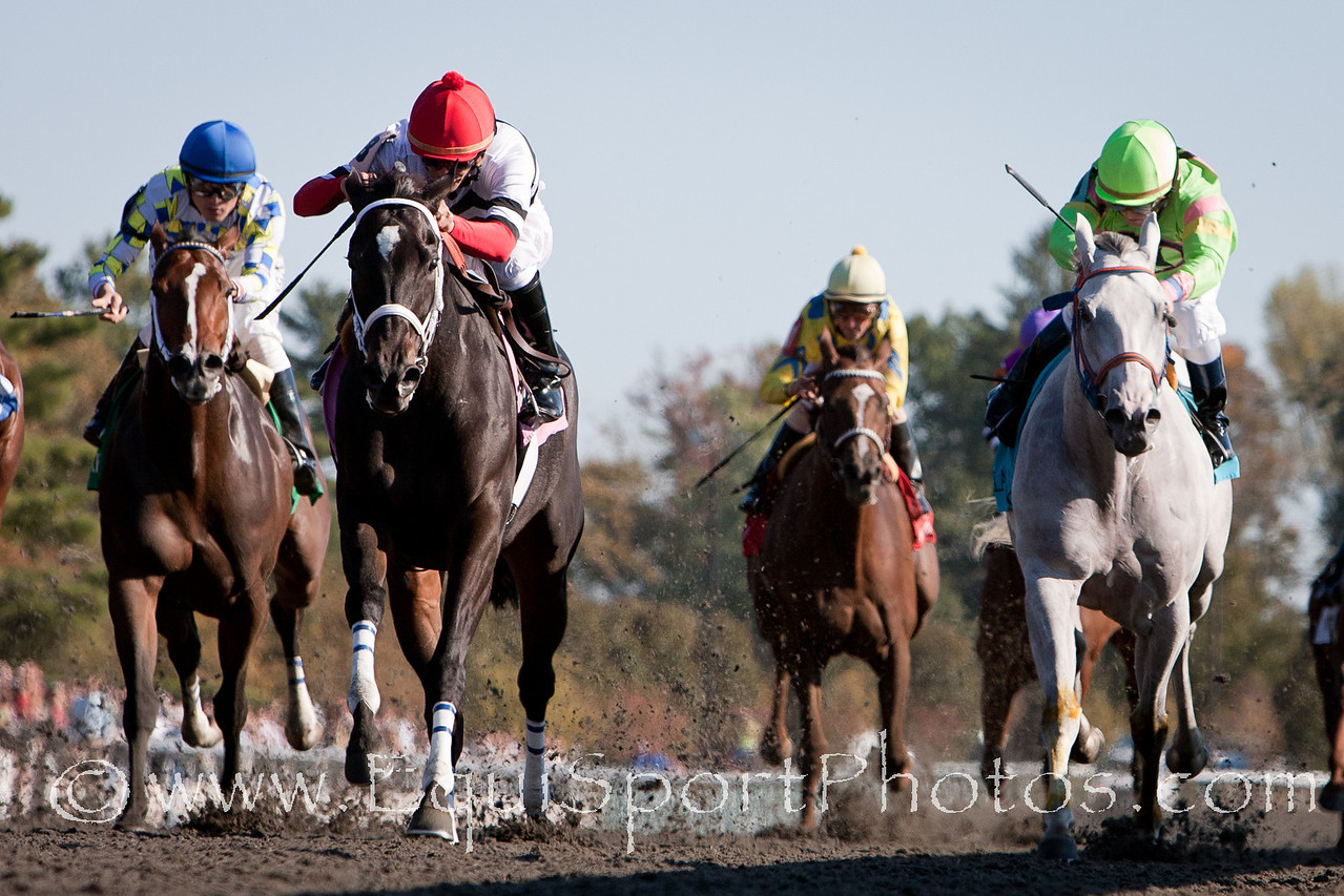 Dubai Majesty (Essence of Dubai), Jamie Theriot up, wins Thoroughbred Club of America at Keeneland 10.09.2010mw