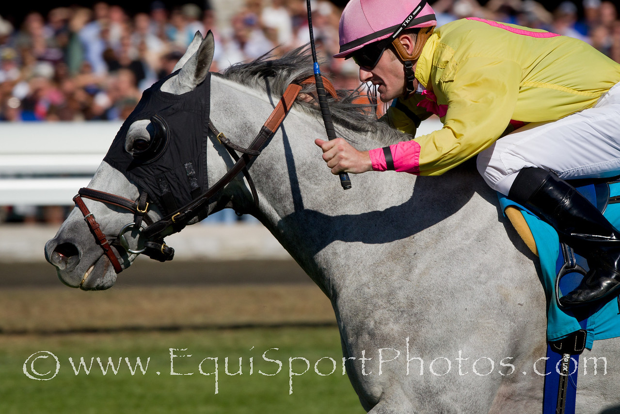 Silver Timber (Prime Timber), Julien Leparoux up, wins the Woodford Stakes at Keeneland 10.09.2010mw