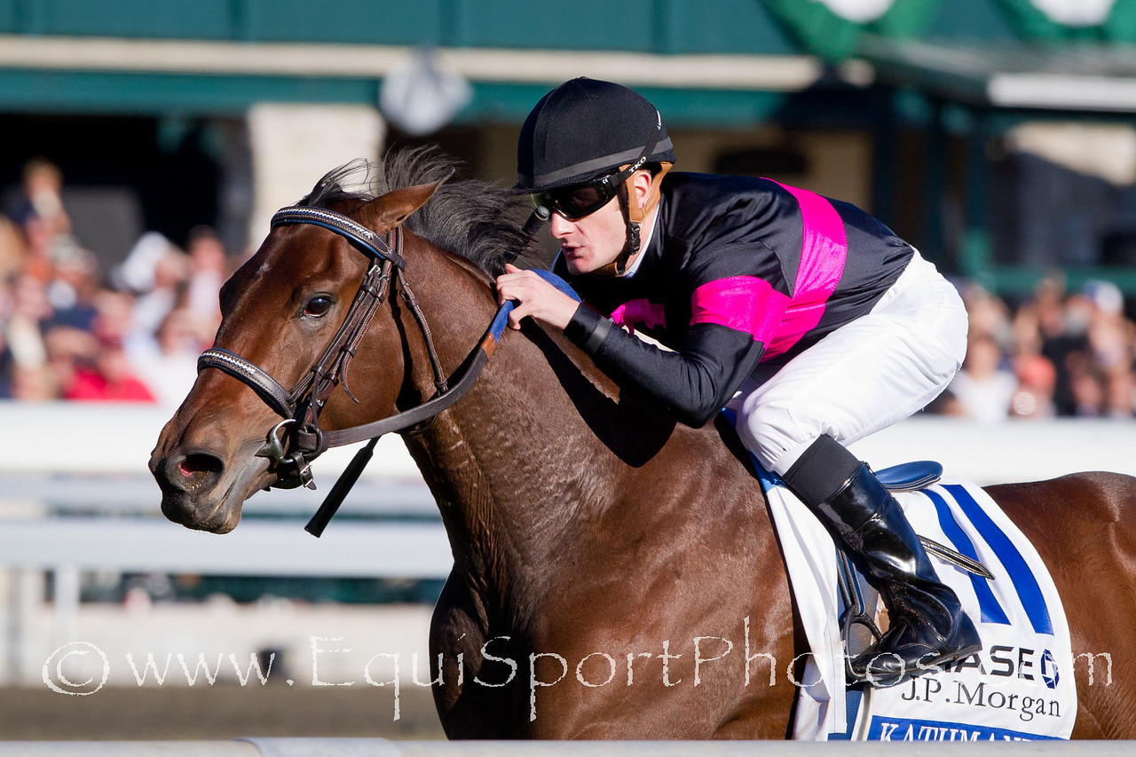 Kathmanblu (Bluegrass Cat), Julien Leparoux up, wins the JP Morgan Jessamine Stakes at Keeneland 10.14.2010