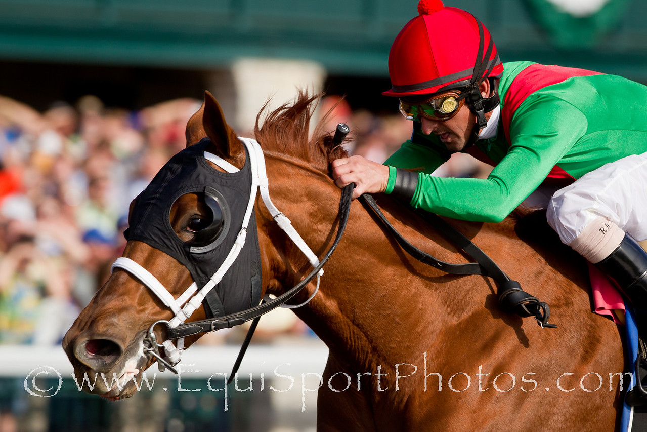 Animal Kingdom (Leroidesanimaux), Robby Albarado up, wins a Maiden at Keeneland 10.23.2010