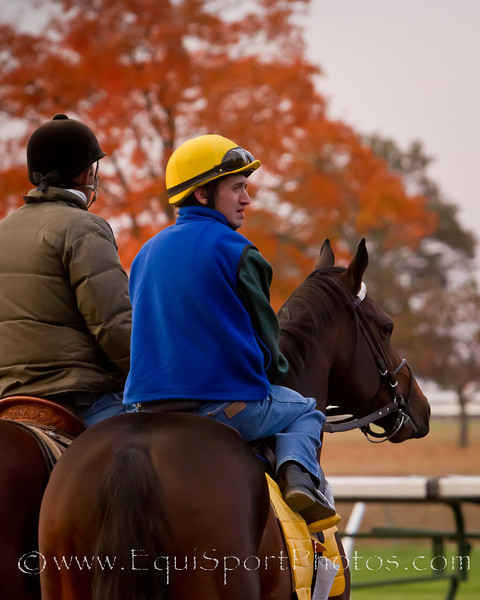 Blame works at Keeneland on 10.24.2010ww