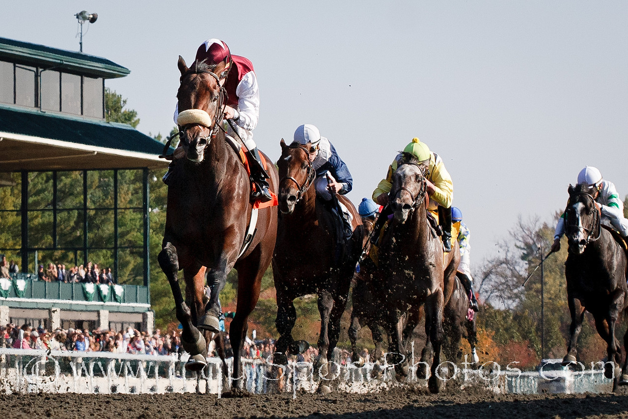 Do It All (Distorted Humor), James Graham up, breaks Maiden at Keeneland 10.29.2010