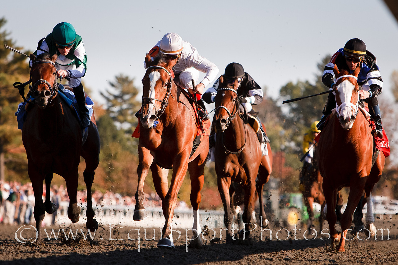 Dynamic Holiday (Harlan's Holiday), John Velazquez up, wins an MSW at Keeneland 10.22.2010mw