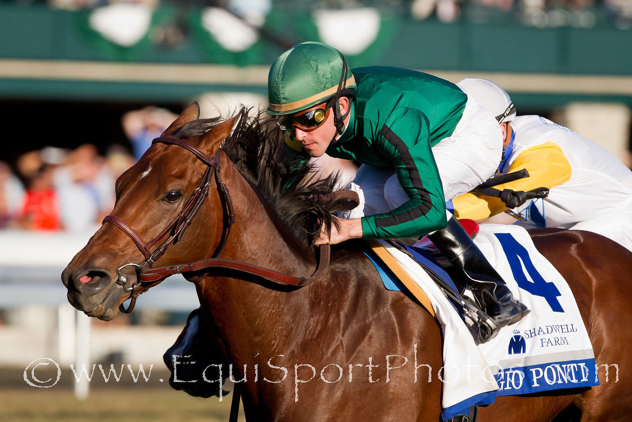 Gio Ponti (Tale of the Cat), Ramon Dominguez up, wins the Shadwell Turf Mile at Keeneland 10.09.2010mw