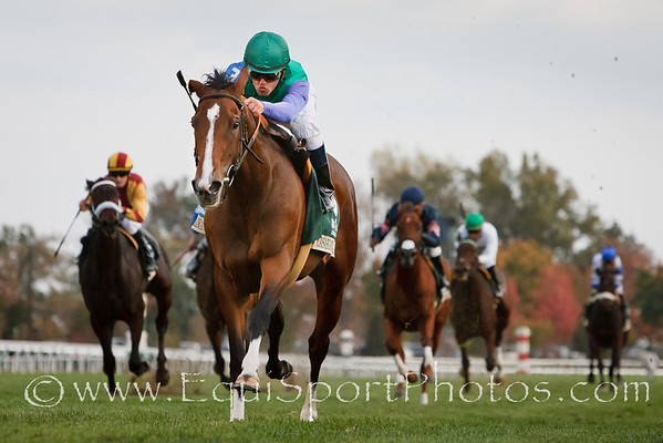 Casablanca Smile (Ocean Terrace), Javier Castellano up, wins the Rood & Riddle Dowager S. at Keeneland 10.24.2010mw