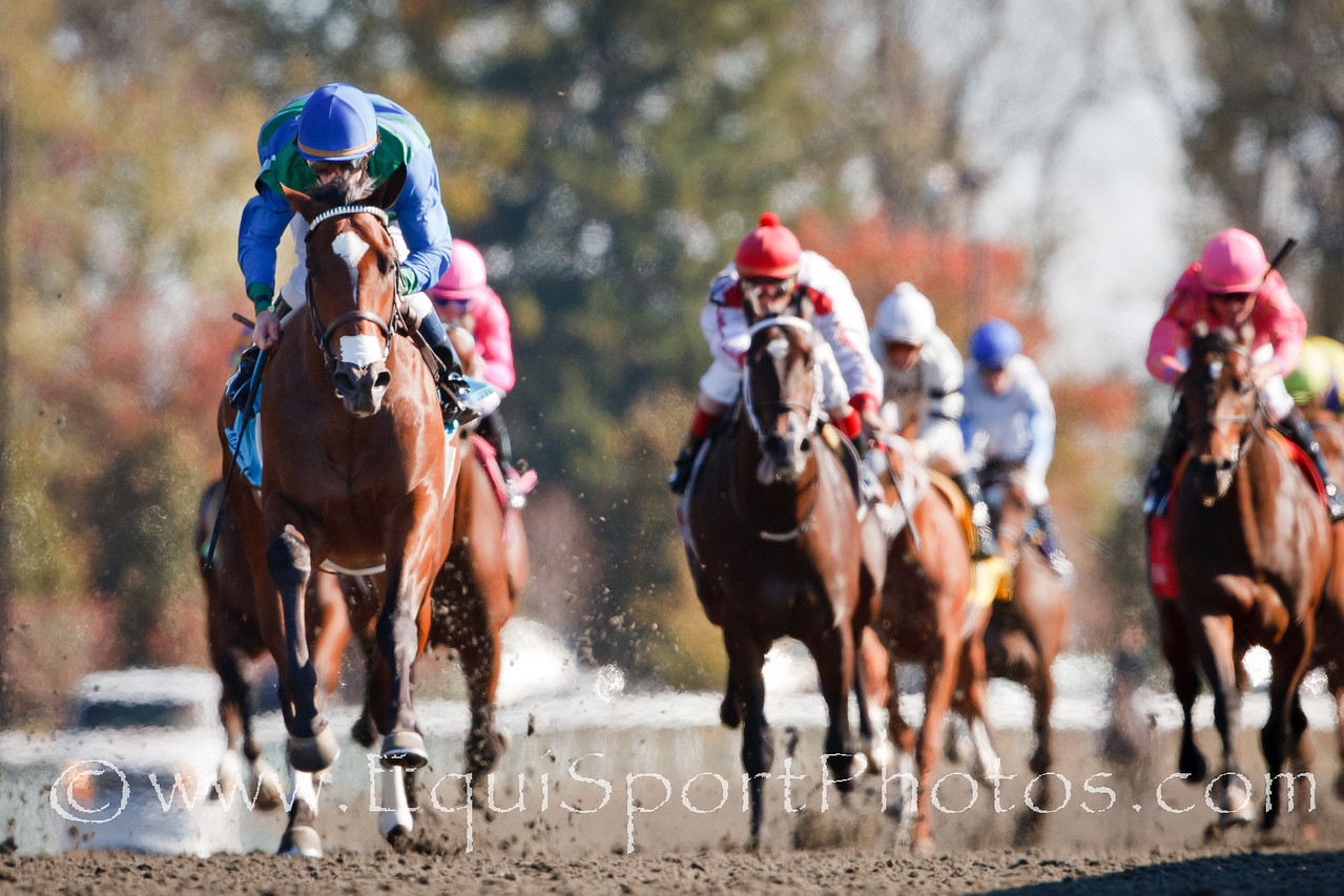 Tonto Too (My Friend Max), James Graham up, wins a MSW at Keeneland 10.28.2010mw