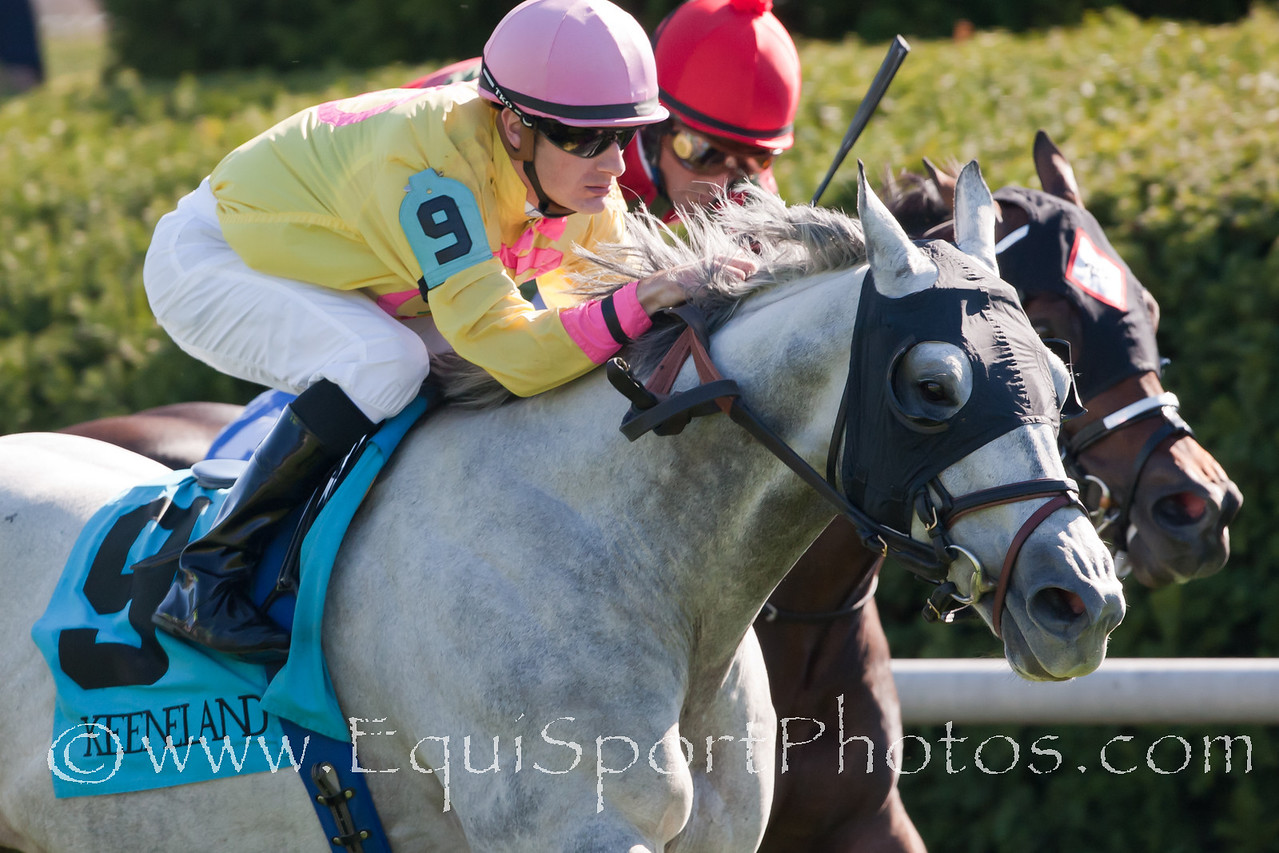Silver Timber (Prime Timber), Julien Leparoux up, wins the Woodford Stakes at Keeneland 10.09.2010ww