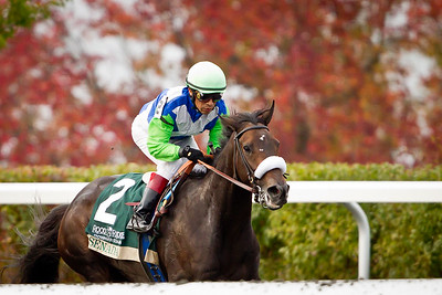 Senada, Edgar Prado up, wins the Rood & Riddle Dowger Stakes at Keeneland 10.23.2011. Trainer: Barclay Tagg, Owner: Lael Stables (Roy Jackson)