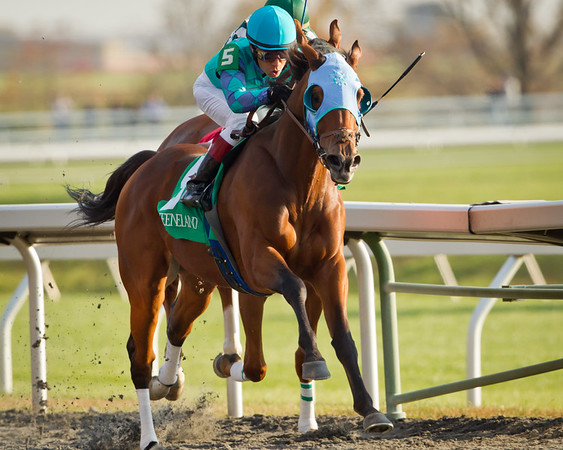 Bergerac wins an allowance race at Keeneland on 10.29.2011.  Edgar Prado up, James Baker trainer, Courtland Farm owner.