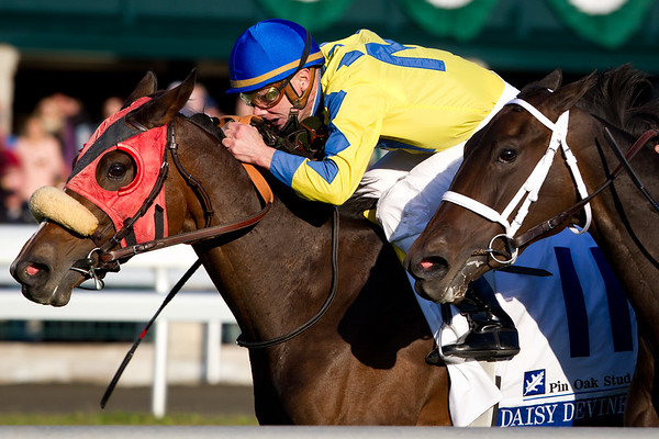 Daisy Devine, Calvin Borel up, wins the Pin Oak Valley zView Stakes at Keeneland 10.21.2011. Trainer: Andrew McKeever, Owner: James Miller