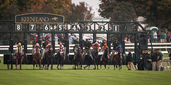 The start of the Queen Elizabeth II Challenge Cup Stakes at Keeneland on 10.13.2012
