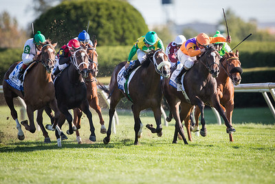 Moonwalk (Malibu Moon) wins the closely contested  JP Morgan Jessamine Stakes (G3T) at Keeneland on 10.11.12.  Corely Lanerie up, Dale Romans trainer.  Spendthrift Farm owners.