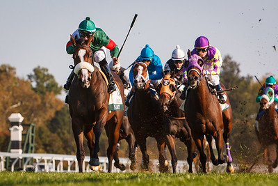 Madame Giry (Castledale), Eddie Castro up, wins the Buffalo Trace Franklin County Stakes at Keeneland 10.12.12. Trainer: Cam Gambolati, Owner: Nutmeg Stable (Thomas Tierney).