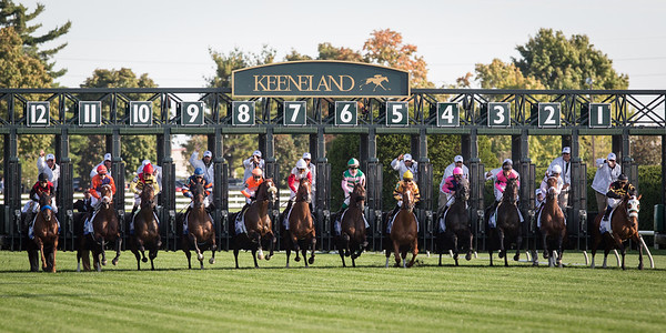 The horses break from the gate in the Shadwell Turf Mile at Keeneland on 10.06.2012
