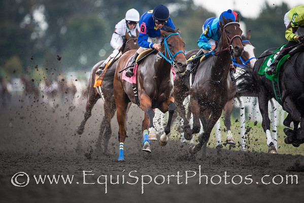 Fun Elusive and the other horses going around the clubhouse turn in the 2nd race