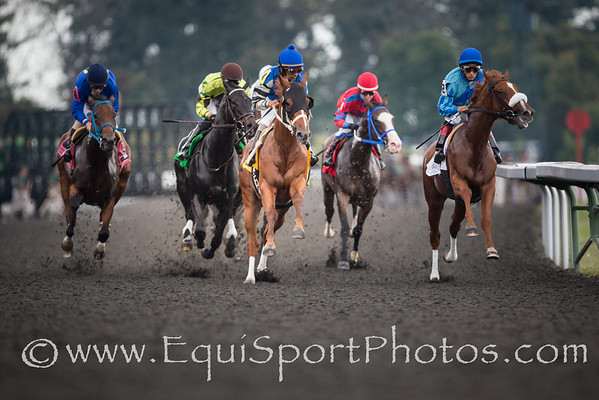 The horses coming into the clubhouse turn in the 2nd race at Keeneland on 10.05.2013