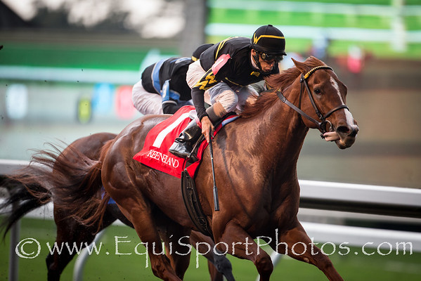 Judy The Beauty (Ghostzapper) wins The Thoroughbred Club of America (G2) at Keeneland on 10.05.2013. Johnny Velazquez up,Wesley Ward owner and trainer.