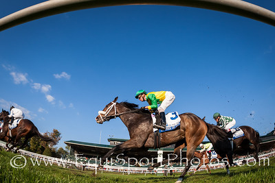 Summer Of Fun runs 3rd in the Pin Oak Valey View Stakes at Keeneland 10.18.13.