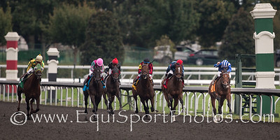 Najjaar (Jazil) wins the Sycamore Stakes (G3) at Keeneland on10.17.2013. James Graham up, Dan Peitz trainer, Shadwell Stable owner.