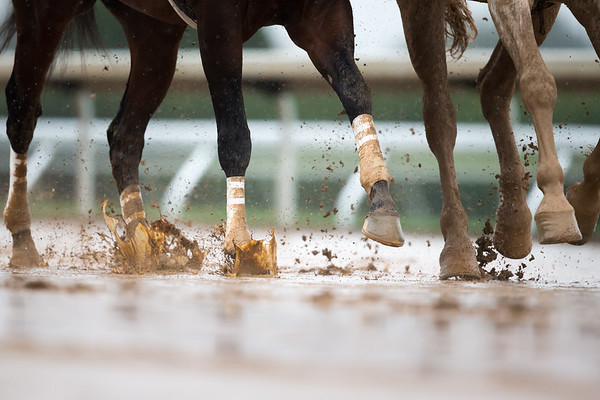 Splish splashing their way on Opening Day of the Keeneland Fall Meet.