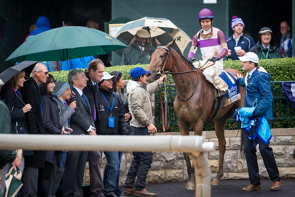 Gomo (Uncle Mo) wins the Darley Alcibiades (G1) at Keeneland on 10.2.2015. Mario Gutierrez up, Doug O'Neill trainer, Paul Reddam owner.