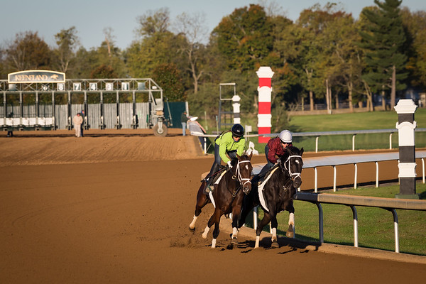 Thrilled (OUTSIDE) and Azar (INSIDE) work in company on 10-16-15 at Keeneland Race Course.