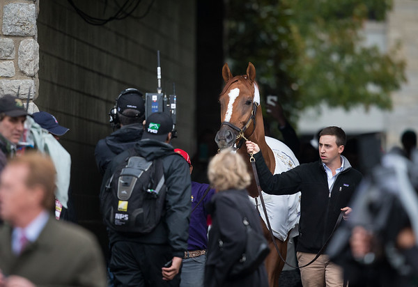Wise Dan was paraded at Keeneland to celebrate the champion and 2 time horse of the year as he now enters into retirement. It was an emotional day for the Lopresti Stables.