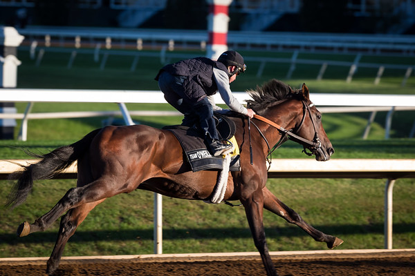 Ralis works on 10-16-15 at Keeneland Race Course.