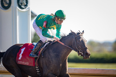 Irish Jasper (First Defence) wins the Thoroughbred Club of America (G2) at Keeneland on 10.08.2016. Julien Leparoux up, Chad Brown trainer, Bill Farish and David Mackie owners.