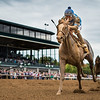 """Free Drop Billy (#9, Union Rags) wins the Breeders' Futurity (G1 """"Win and You're In"""") at Keeneland on 10.07.2017. Robby Albarado up, Dale Romans trainer, Albough Family Stables owner."""