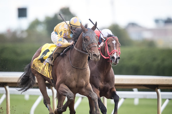 Diamond Oops (Lookin at Lucky) wins the Phoenix at Keeneland on 10.2.2020. Florent Geroux up, Patrick Biancone trainer, Diamond 100 Racing Club, LLC, Dunne, Amy E., D P Racing LLC and Patrick L. Biancone Racing LLC owners