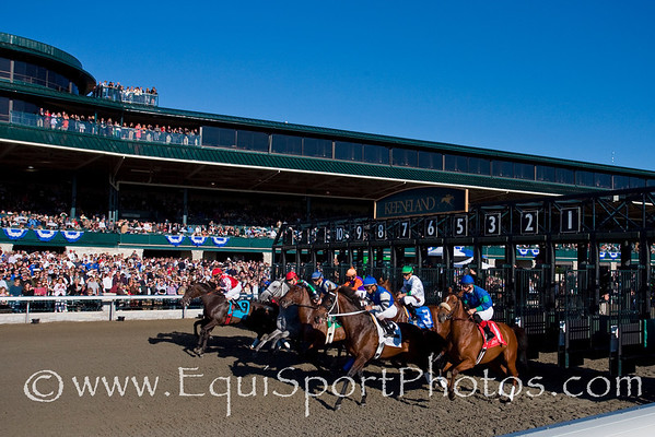 Keeneland Starting Gate and Crowd 10.18.2008mw ( Horse Racing Photos by EquiSport Photos )