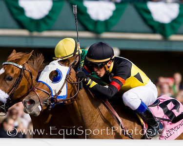 Sandstorm Cat (Tale of the Cat), Miguel Mena up, wins an Allowance at Keeneland 10.25.2008mw ( Horse Racing Photos by EquiSport Photos )