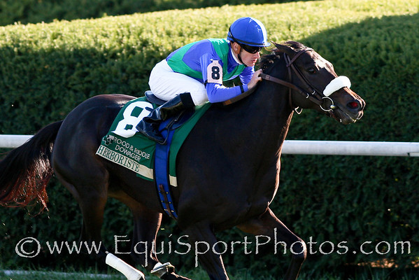 Herboriste wins the Rood and Riddle Dowager Stakes at Keeneland 10.19.08. Ridden by Julien Leparoux and trained by Michael Matz. ( Horse Racing Photos by EquiSport Photos )