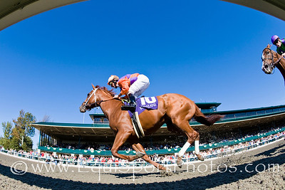 'Map Of The World' (Hennessy), Robby Albarado up, breaks Maiden at Keeneland. 10.09.2008mw ( Horse Racing Photos by EquiSport Photos )