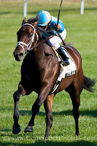 Bittel Road (Stormy Atlantic), Rajiv Maragh up, wins the Woodford Reserve S.(G3) at Keeneland 10.05.2008. ( Horse Racing Photos by EquiSport Photos )