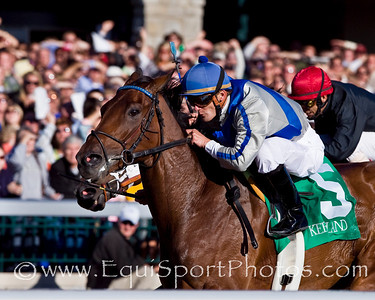 Evade (Smoke Glacken), Jamie Theriot up, wins an Allowance at Keeneland 10.18.2008mw ( Horse Racing Photos by EquiSport Photos )