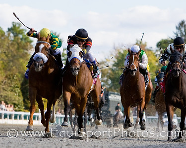 Sandstorm Cat (Tale of the Cat, white blinkers), Miguel Mena up, wins an Allowance at Keeneland 10.25.2008mw ( Horse Racing Photos by EquiSport Photos )