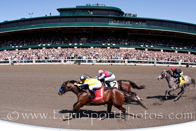 Gridiron (Giant's Causeway), Javier Castellano up), wins an Allowance at Keeneland 4.17.2010