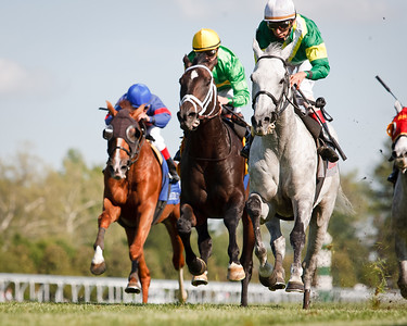 Musketier (Acatenango) wins The Elkhorn Stakes (G2) at Keeneland on 4.29.2011. John Velazquez up, Roger Attfield trainer, Stella Perdomo owner.