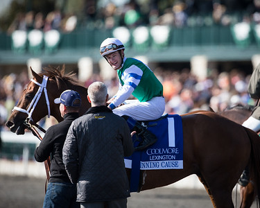 Winning Cause (Giant's Causeway) wins the Lexington Stakes (G3) at Keeneland on 4.20.2013. Julien Leparoux up, Todd Pletcher trainer, Alto Racing (Gil Moutray) owner.