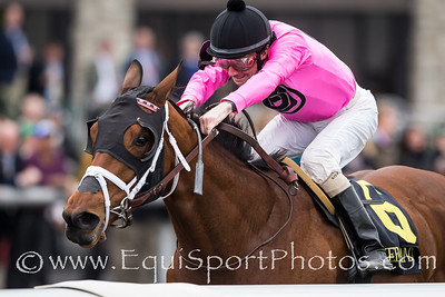 Sisterly Love (Bellamy Road), Stewart Elliot up, wins an Allowance at Keeneland 4.04.14. Trainer, Mark Casse. Owner, Gary Barber.