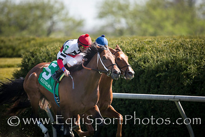 Marchman (Sharp Humor) wins The Shakertown (G3) at Keeneland on 4.12.2014. Robby Albarado up, ret Calhoun trainer, Martin Racing Stable owner.