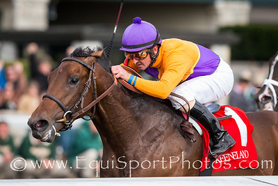 Medal Count (Dynaformer), Robby Albarado up, wins the Transylvania S. at Keeneland 4.04.14. Trainer, Dale Romans. Owner, Spendthrift Farm.