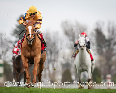Wise Dan (Wiseman's Ferry) wins the Maker's 46 Mile (G1) at Keeneland on 4.11.2014. John Velazquez up, Charles LoPresti trainer, Morton Fink owner.