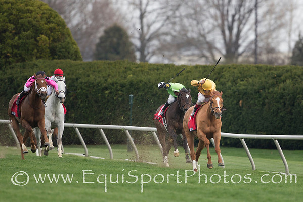 Wise Dan ( Wiseman's Ferry) wins the Maker's 46 Mile (G1) at Keeneland on 4.11.2014.  Johnny Velazquez up, Charles LoPresti trainer, Morton Fink owner.