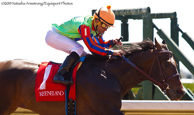 Fracula (Rockport Harbor) Joel Rosario up, wins a $50,000 Maiden Claiming Race at Keeneland on 4.12.15 Trainer: Kenneth Mcpeek Owner: Magic City Thoroughbred Partners